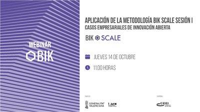 Webinar Bik Scale sesión 1