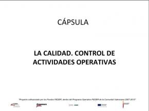 portada capsula La calidad. Control de actividades