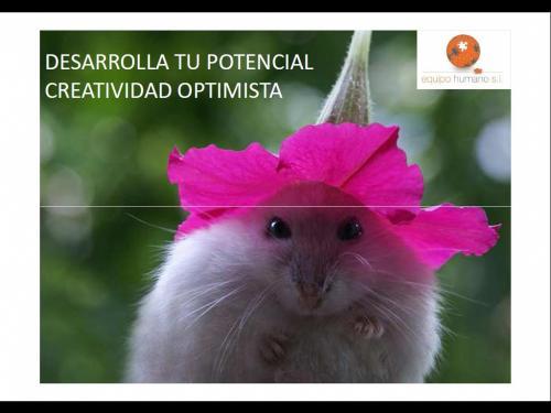 Desarrolla tu potencial-Creatividad Optimista