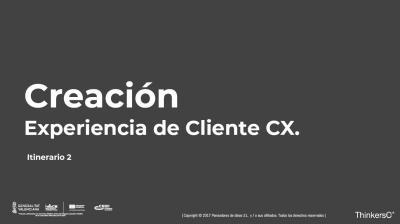Manual creación de experiencia del cliente cx