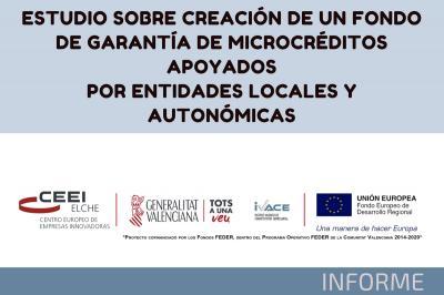 Estudio sobre creación de un Fondo de Garantía para la concesión de microcréditos