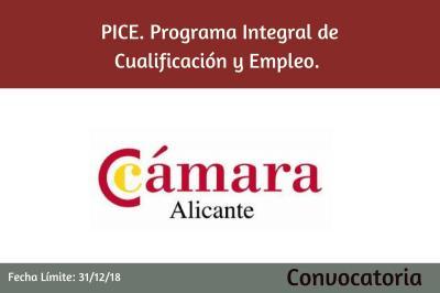 Programa Integral de Cualificación y Empleo. Plan de Capacitación.Programa PICE