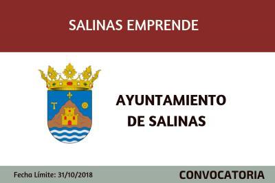 Programa Salinas Emprende