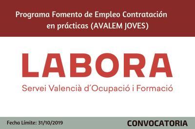 Programa Foment de l'ocupació Contractació en pràctiques (AVALEM JOVES)
