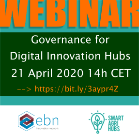 Governance for Digital Innovation Hubs